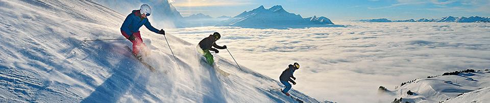 Activity Skiing